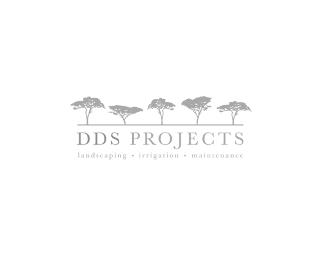 DDS Projects