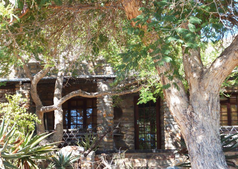 slanghoek karoo trees 2018