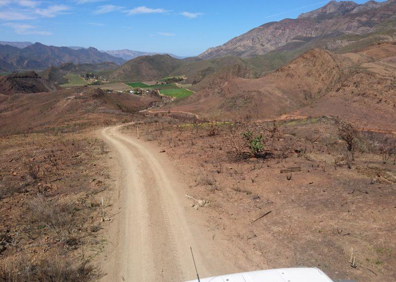 heimo montagu road