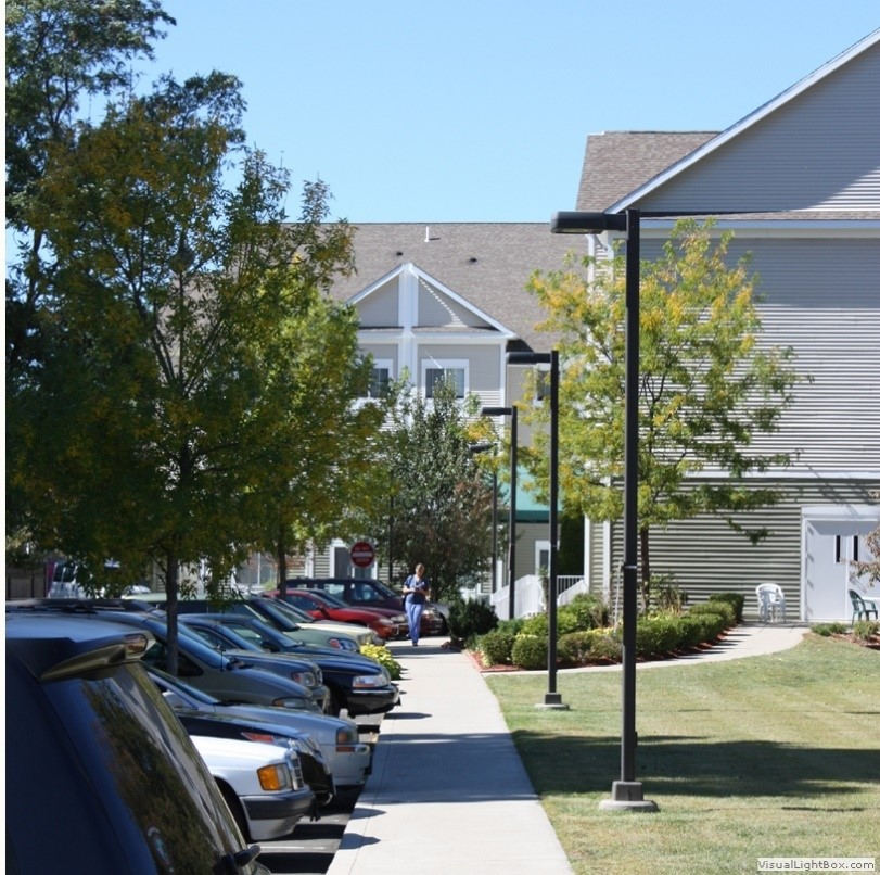 Mature Trees Increase Property Value
